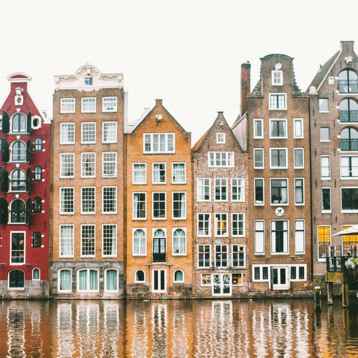 V Amsterdame.
